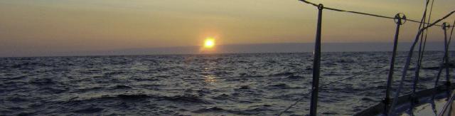 SY Amazone