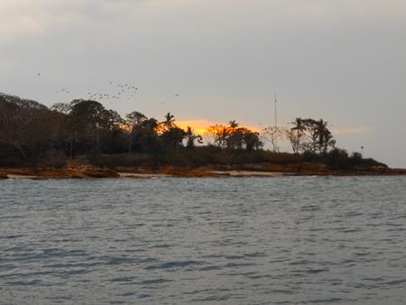 Die Vogelinsel Isla Pecheca