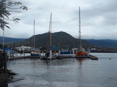 Gegenwind in der Apia Marina