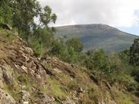 Portosin: Bergauf, Bergab
