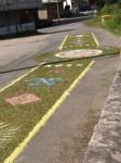 Portosin: Blumenteppich