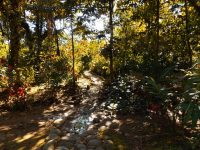 2 Traditionell ausgebaute Wege im Sacha Wasi Gebiet