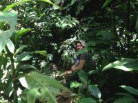 21 Rastplatz im Dschungel