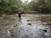 22 Flußquerung im Dschungel