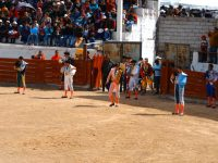 Canar: Die Matadore stellen sich vor