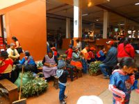 Cuenca: Traditionelle Kräuterheilung