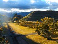 Cuenca: Inkamuseum Pumapungo