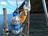 Restmüll unserer gesamten Pazifikquerung
