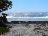 Pazifikwellen rauschen aufs Außenriff