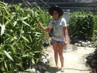 Fatino führt uns durch die Familienfarm