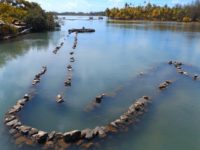 Uralte polynesische Fischfalle