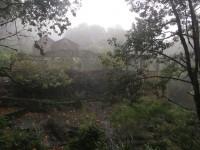 Madeira: Levada do FuradoHeimstätte der Waldgeister