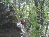 Madeira: Waldgeist der Levada do Furado