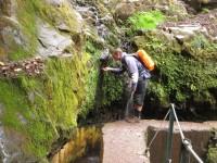 Madeira: klares Trinkwasser in der Levada do Furado