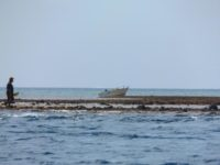 Fischer auf dem Riff bei Ebbe