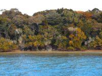 Île Casy: Nutur pur vor dem Bug