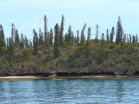 Île des Pins: Vom Meer geformt