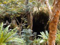 Grotteneingang