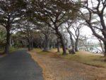 Nouvelle Calédonie: Ganz nahe am Paradies