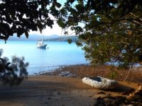 Ile de Casy: Urwald und Meer