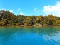 Ile de Casy: Wunderschöne Natur