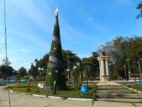 Weihnachtsbaum in Dili