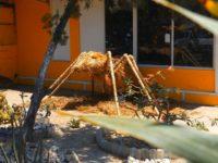 Eine große Ameise bewacht die Kunstwerkstatt