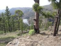 Blick auf den Presa del Mulato