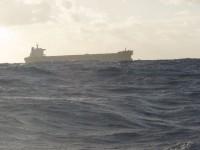 Begegnung mitten auf dem Ozean