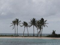 Bezaubernder Charme der Salt Whistle Bay auf Mayreau