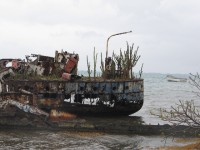 Skurriles Schiffswrack vor dem Strand