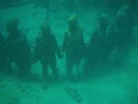 Moliniere Point: Unterwasser Skulpturenpark