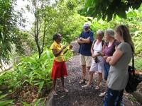 De La Grenade: Verzaubert durch die Gerüche und Geschmäcker im Kräutergarten