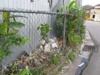 Plastik und anderer Müll wird überall in ungenutzte Ecken entsorgt