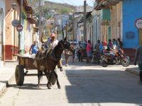 Pferdefuhrwerke sind hier keine Touristenshow sondern Alltag