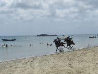Am Südwest Strand_Pferderennen