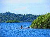 Fischer paddeln um Mangroveninseln