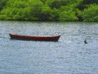 Fischer beim Speerfischen