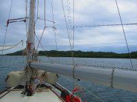 Sicherer Ankerplatz zwischen Mangroveninseln