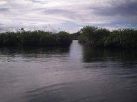 Künstliche Dingi- Durchfahrt zwischen den Mangroven