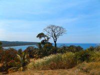 Spaziergang: Ein letzter Blick auf die Karibik am Rio Chagres
