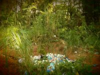 Spaziergang: Naturschutzgebiet, Müllabladen verboten